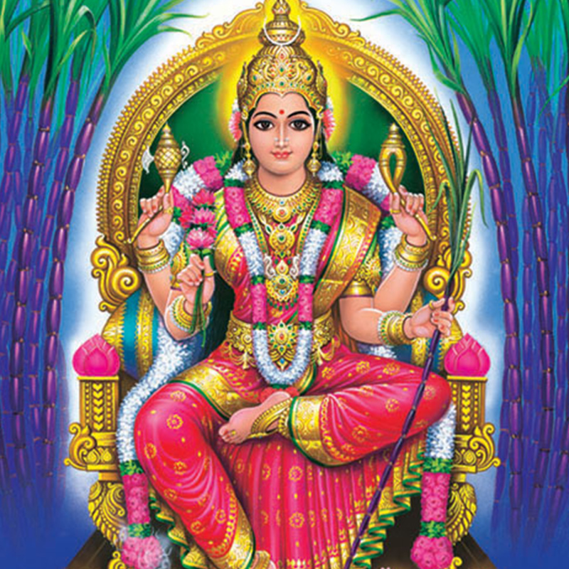 Aadi Goddess Month Ceremonies
