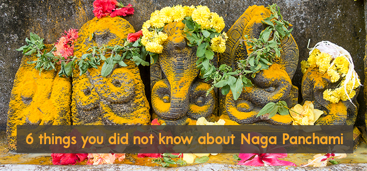 6 Things You Did Not Know about Naga Panchami