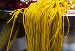 Sacred Yellow Thread