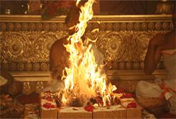 6 Priest Grand Achidra Parayanam with Ashutoshi Sashi Shekara Homa