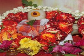 Mahadeva Dhyanamantra Pushpanjali