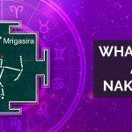 What is Rasi and Nakshatra