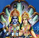 Lakshmi Narayana Homa