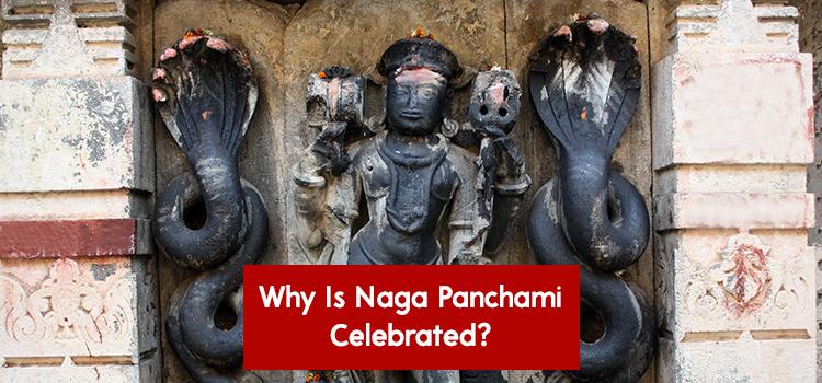 Why is Naga Panchami celebrated?