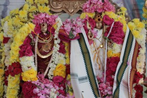 Muruga Marriage Ceremony 2016