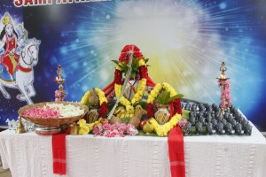 Sampatkari Ashwarooda Homa - 2016
